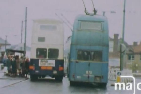 Image of two buses side by side.